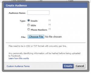 fb power editor with custom audiences